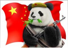 panda,beauval